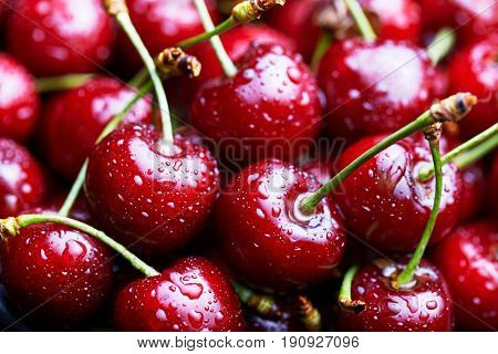 Cherries with water drops macro background. Antioxidant, natural, vitamin, organic berry. Drops of water on the surface of berries. Selective focus