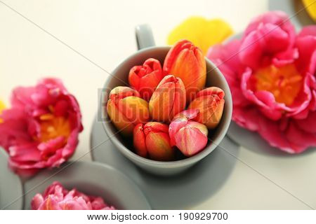 Composition with beautiful tulip flowers and dishware on light background