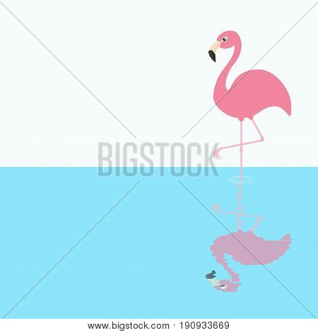 Pink flamingo standing on one leg. Shadow circles on the water. Exotic tropical bird. Zoo animal collection. Cute cartoon character. Decoration element. Flat design. White blue background. Vector