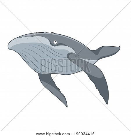 Vector image of the Cartoon swimming Whale