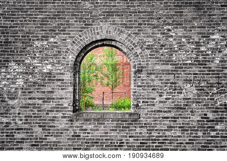 Window in black and white brick wall with green trees imprisoned nature conceptual photo.