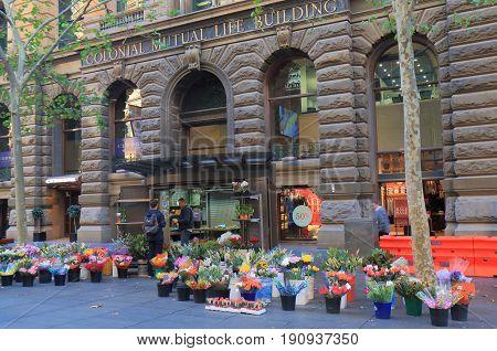 SYDNEY AUSTRALIA - JUNE 1, 2017: Unidentified people visit flower shop in Martin Place downtown Sydney.