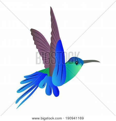 beautiful colored icon flying bird Hummingbird on a white background. vector illustration. pattern for decoration or scenery