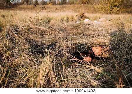 Dyatlovichi, Belarus - October 1, 2016: Reenactor Dressed As Russian Soviet Red Army Soldier Of World War II Hidden Sitting And Aiming Sub-machine Gun PPSh-41 Weapon From Trench Ambush In Meadow