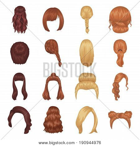 Quads, blond braids and other types of hairstyles. Back hairstyle set collection icons in cartoon style vector symbol stock illustration .