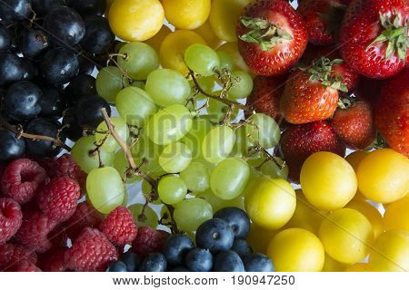 A Serving of a Variety of Colourful, Fresh Summer Fruits in Germany, Europe