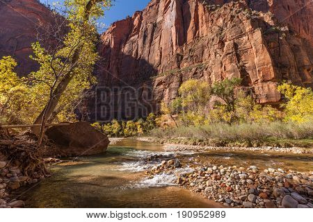 a scenic fall landscape in the narrows in Zion National park Utah