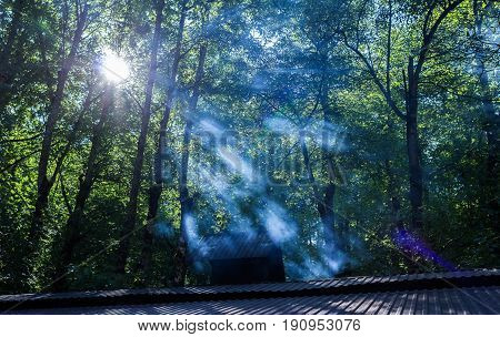 The roof of the house, sun beams and fog in the forest. Natural landscape.
