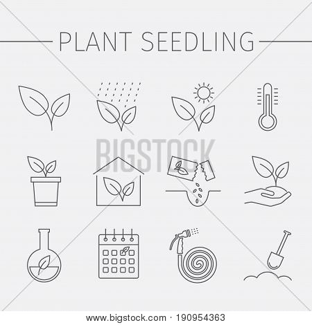 Growing plants line icons set. Plant seedling sign. Vector illustration.