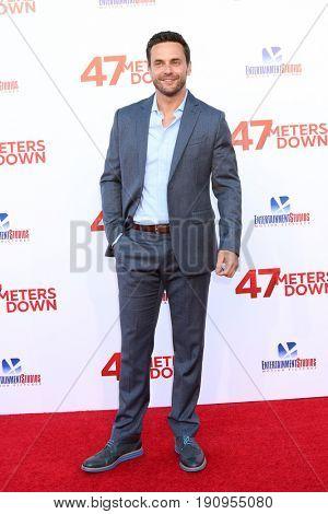 LOS ANGELES - JUN 12:  Chris J Johnson at the