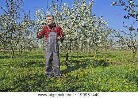 Farmer visibly pleased and joyous after visiting orchards with cherries.