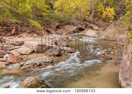 the scenic virgin river in autumn as it flows through the Zion narrows