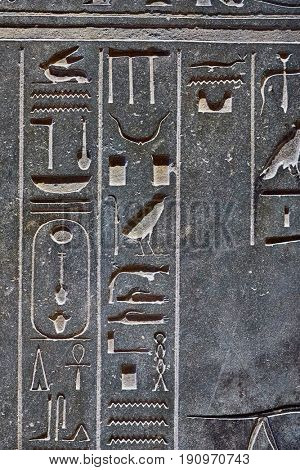 Hieroglyph carvings