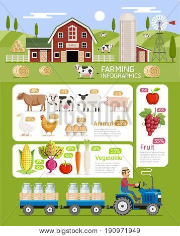 Farming infographic elements template. Vector illustration. Can be used for workflow layout banner diagram number options step up options web design timeline