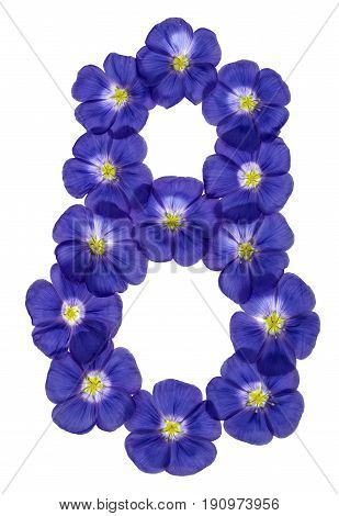 Arabic Numeral 8, Eight, From Blue Flowers Of Flax, Isolated On White Background