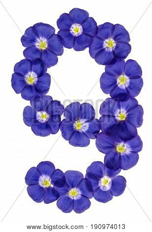 Arabic Numeral 9, Nine, From Blue Flowers Of Flax, Isolated On White Background