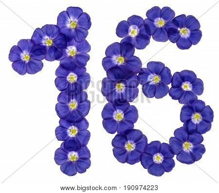 Arabic Numeral 16, Sixteen, From Blue Flowers Of Flax, Isolated On White Background