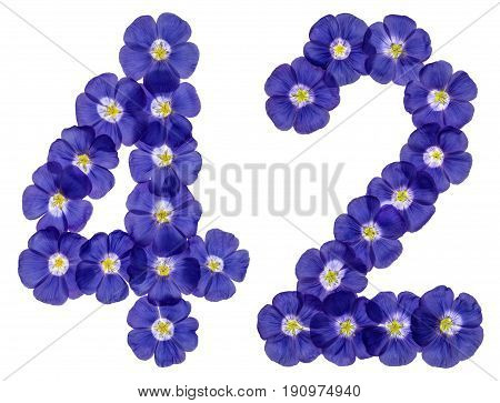 Arabic Numeral 42, Forty Two, From Blue Flowers Of Flax, Isolated On White Background