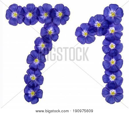 Arabic Numeral 71, Seventy One, From Blue Flowers Of Flax, Isolated On White Background