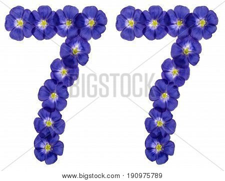 Arabic Numeral 77, Seventy Seven, From Blue Flowers Of Flax, Isolated On White Background
