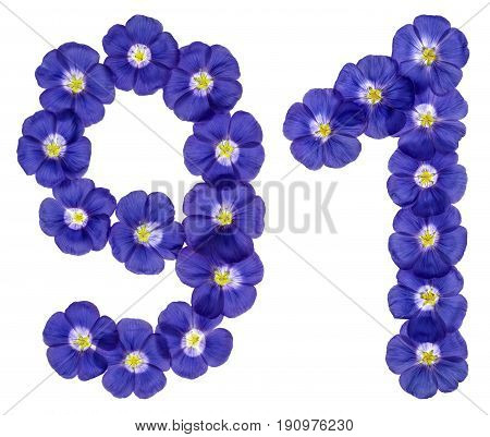 Arabic Numeral 91, Ninety One, From Blue Flowers Of Flax, Isolated On White Background