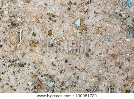 Detail stone and soil on dry ground for background