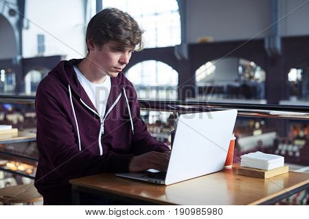 Wide shot of concentrated boy working in laptop while sitting in cafe with copy space