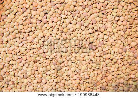 Castellana lentils. Lentils background. Natural organic lentils
