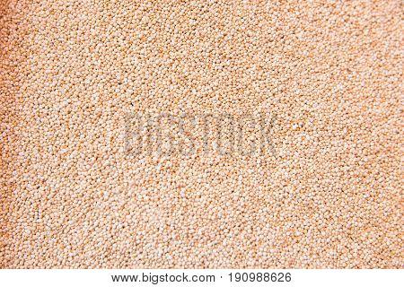 close up view of organic white quinoa. White quinoa background or texture