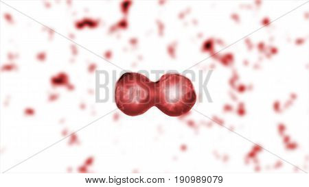 Reproduction Of Blood Cells In The Living Body Illustration