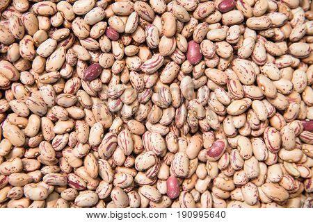 Pinto beans. Beans background. Natural organic beans