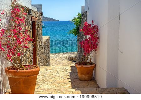 Clay flower pots with flowering bougainvillea on a picturesque stone staircase to the blue sea between white stucco walls on the island of Crete Greece