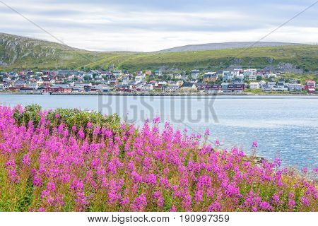 Picturesque small fishing village Kjøllefjord by the seaside in Finnmark, Norway