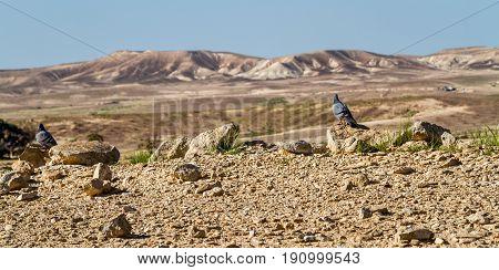 The Makhtesh Gadol or Large Crater, nature reserve in Negev desert, Israel