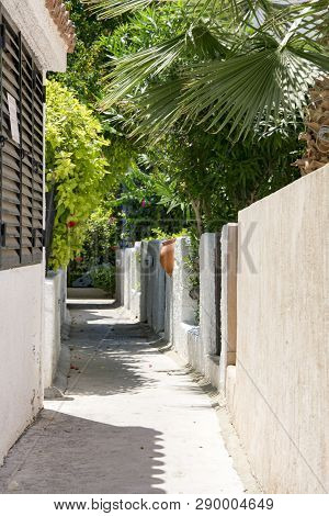 Narrow Street, Stone White Fence, Clay Jug, Thickets Of Flowering Shrubs, Cyprus