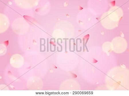 Flying Cherry Blossom Sakura Petal In Springtime On Pink Background