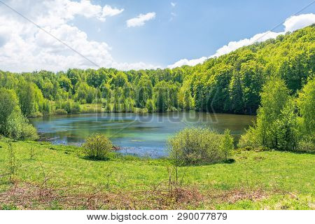 Beautiful Scenery Near The Lake Among Beech Forest. Wonderful Springtime Weather With Fluffy Clouds