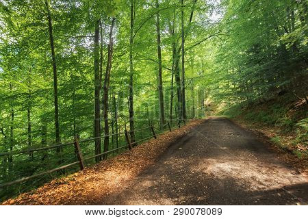 Old Gravel Road Through Beech Forest In Mountains. Beautiful Summer Scenery. Broken Metal Fence Alon