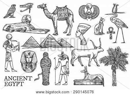 Egypt Symbols And Landmarks Vector Sketches. Great Pyramids And Sphinx, Ankh And Bull, Mummy And Dog