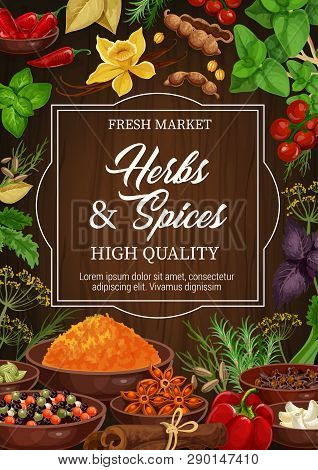 Seasonings, Herbs And Spices, Dried Condiments. Vector Basil And Vanilla, Chili Pepper And Cinnamon,