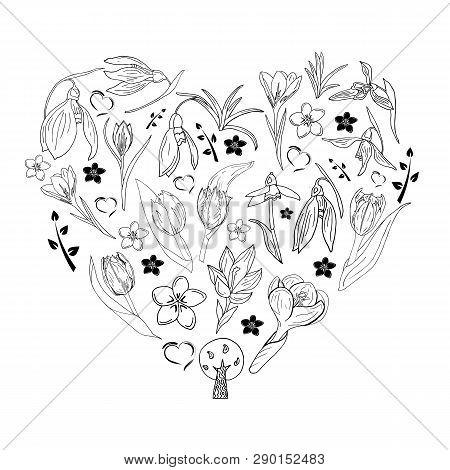 Romantic Floral Spring Flowers Collection. Hand Drawn Doodle Zen Art Pattern. Tulips, Crocus, Snowdr