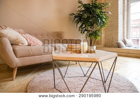 Sofa, Coffee Table And Plant In Living Room Styled Scandinavian.couch And Potted Plant In A Cozy Liv