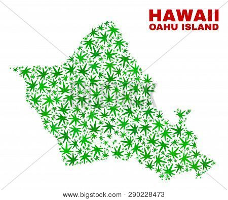 Vector Marijuana Oahu Island Map Collage. Template With Green Weed Leaves For Marijuana Legalize Cam