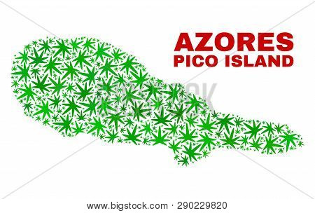 Vector Cannabis Pico Island Map Collage. Template With Green Weed Leaves For Cannabis Legalize Campa