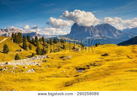 Splendid landscape in Val Gardena on a sunny day. Location place Dolomiti, Trentino Alto Adige, province Bolzano, Italy, Europe. Scenic image of famous Sassolungo peak. Discover the beauty of earth.