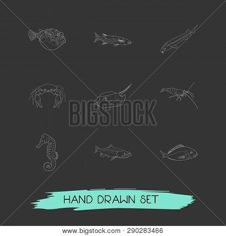 Set Of Sea Icons Line Style Symbols With Shrimp, Crab, Sturgeon And Other Icons For Your Web Mobile