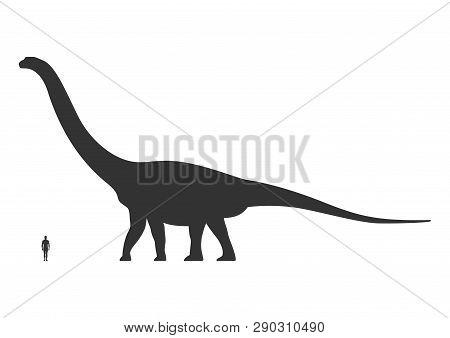 Comparison Of Human And Dinosaur Sizes Isolated On White Background. Argentinosaurus Or Brachiosauru