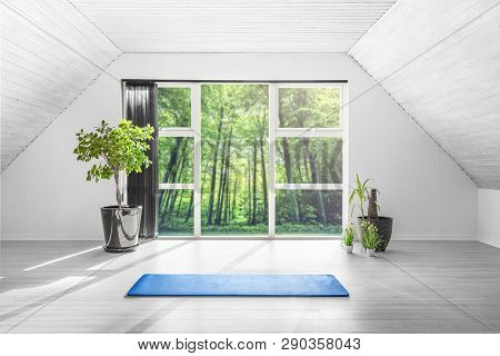 Yoga Gym Room In A Green Forest With A Blue Mat On The Floor And Green Plants