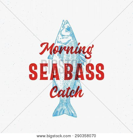 Morning Catch Sea Bass Abstract Vector Sign, Symbol Or Logo Template. Hand Drawn Seabass With Classy