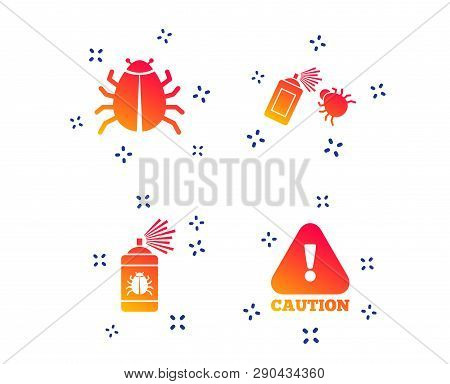 Bug Disinfection Icons. Caution Attention Symbol. Insect Fumigation Spray Sign. Random Dynamic Shape